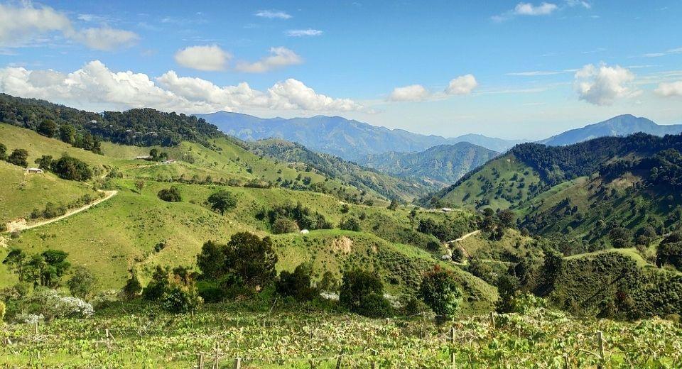 Huila Coffee Growing Region