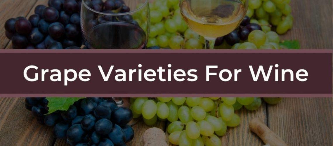 grape varieties for wine